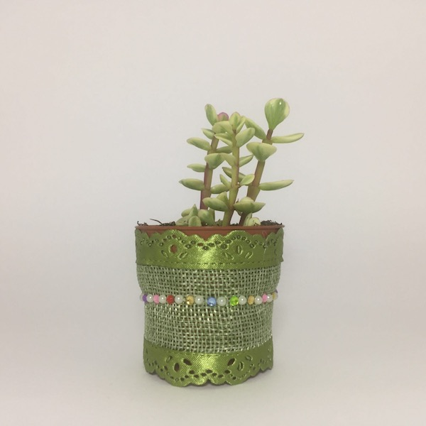 Fiona Succulent Boho Chic Style