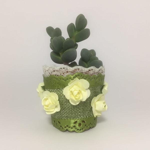 Jasmine Succulent Boho Chic Style