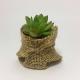 Suculenta clásica con cordón / Succulent Classic Lace mod 05 1